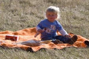 2z9p5008-picknick